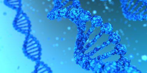 Poradnia genetyczna