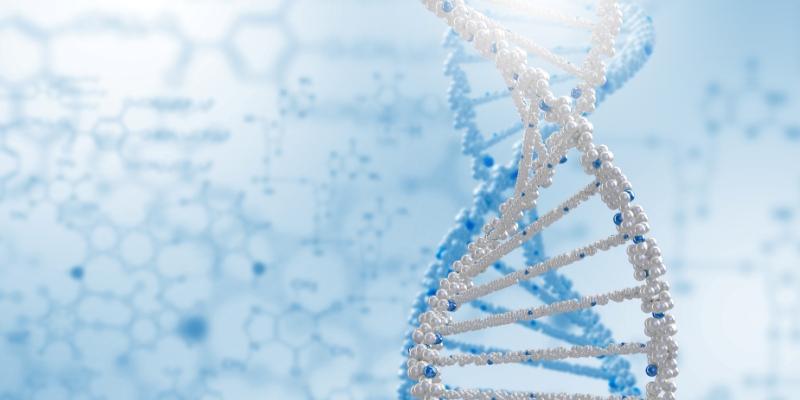 Badanie genu MTHFR