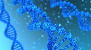 Badanie mutacji genu <em>MTHFR</em> – na czym polega i kiedy je wykonać?