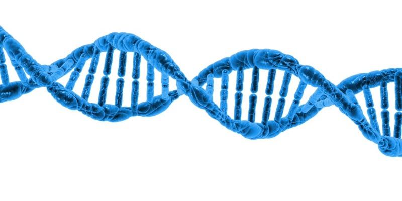 Badanie DNA płodowego, NIPT