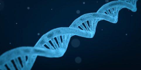 Aberracje chromosomowe liczbowe
