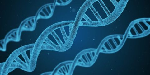 Aberracje chromosomowe strukturalne